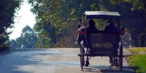 Amish Buggy Rides at Speedwell Forge Bed & Breakfast