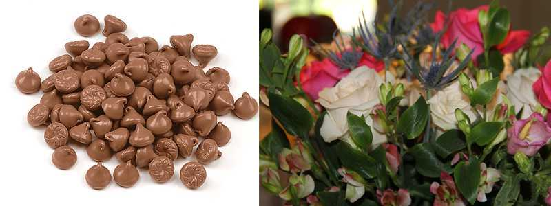 Flower and chocolate specials